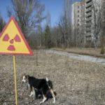 30 лет Чернобыльской аварии: зона живого притяжения