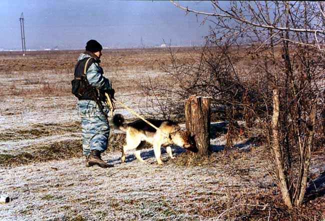 Пощли по дрова. Окрестности Курчалоя. Февраль 2002 г.