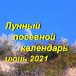 Лунный календарь для садоводов и огородников на июнь 2021 года.